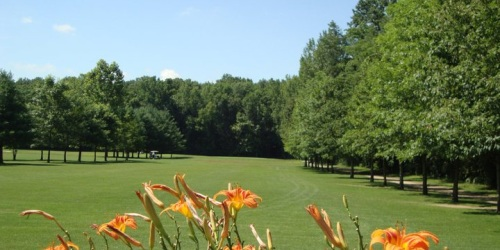 Cypress Run Golf Course